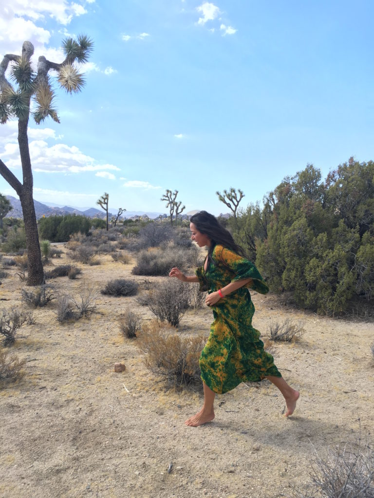 Just returned from Bhakti Fest at Joshua Tree...its amazing how much life there is is such an arid landscape. The trees are witty and resilient - and the rocks and scorpions are playfully winking....